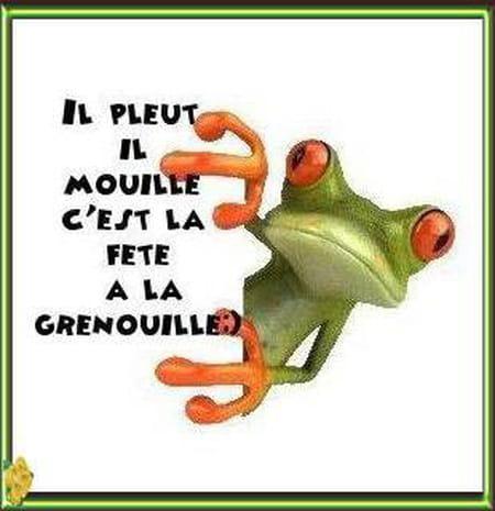 Pascale Delcourt